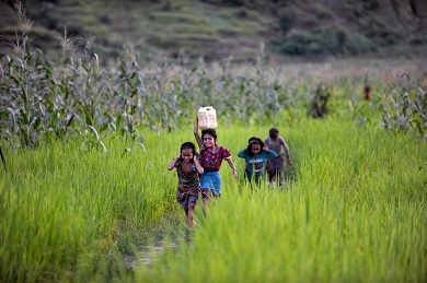 Young girls, one carrying a jerrycan filled with water on her head, make their way home, in Achham District, Nepal, 2014