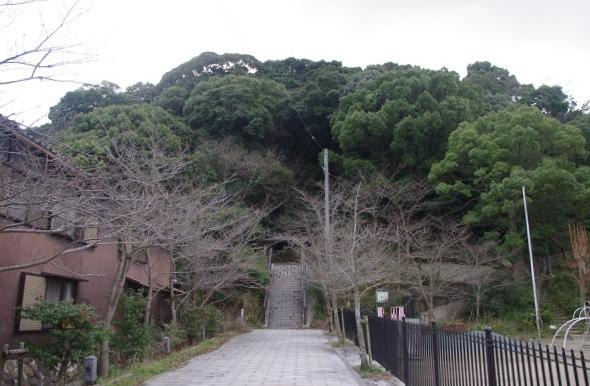 幼いころよく散歩した裏山の曲田山=堀内優美さん撮影
