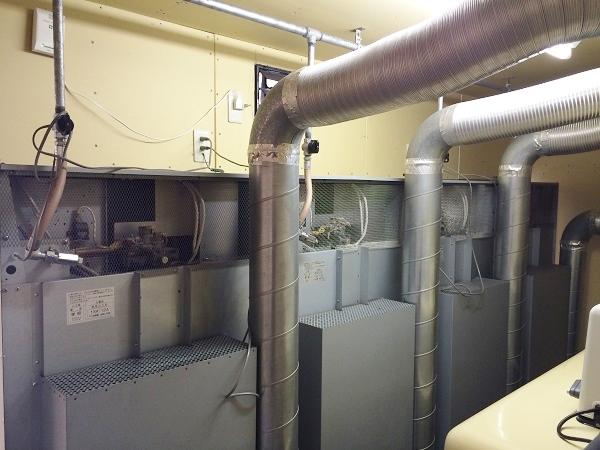 バックヤード内で、乾燥機(4台分)を裏側から見たところ=撮影・橋本正人