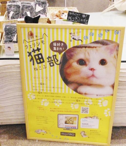 会場内の「フェリシモ猫部」ポスター=撮影・堀内優美