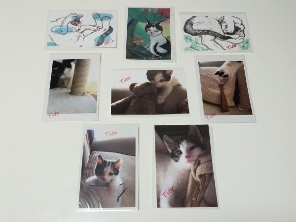 アイデアニュースの読者4名さまに、Titoの写真かイラストを2枚組でプレゼントします