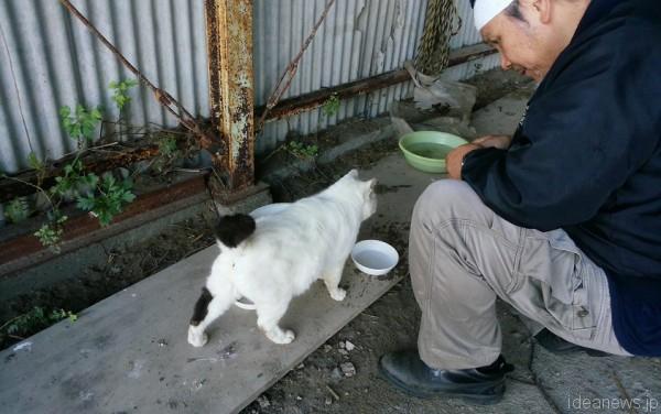 福島第一原発20キロ圏内に生きる猫への給餌を事故直後から今も続けるフリーフォトグラファー太田康介さん=撮影:松中みどり
