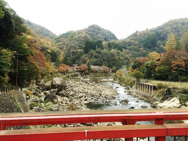 JR武田尾駅へと続く小さな吊り橋「武田尾橋」の上から見た風景。写真中央部に「マルキ旅館」がみえる。写真の川の左側が西宮市、右側が宝塚市=2015年11月13日、撮影・橋本正人