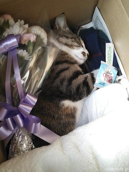 好きだったおやつやお花で飾られて。たくさんの人々に愛された=撮影・岩村美佳