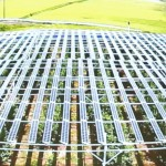 ソーラーシェアリングのパネルを上空から見たところ=東さんが上映したスライドから、撮影・橋本正人