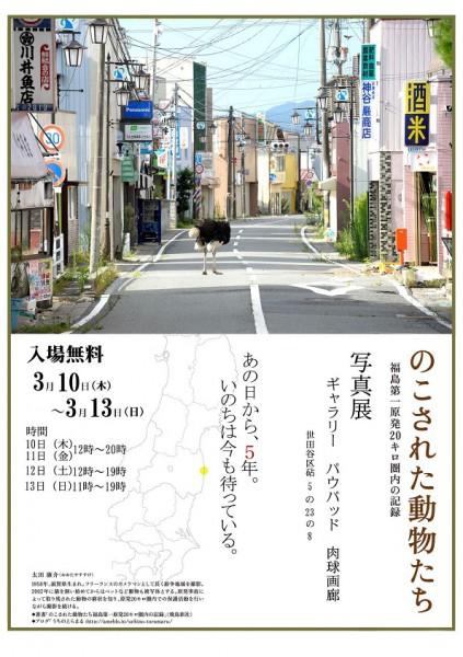 2016年3月10日~13日 太田康介さんの写真展