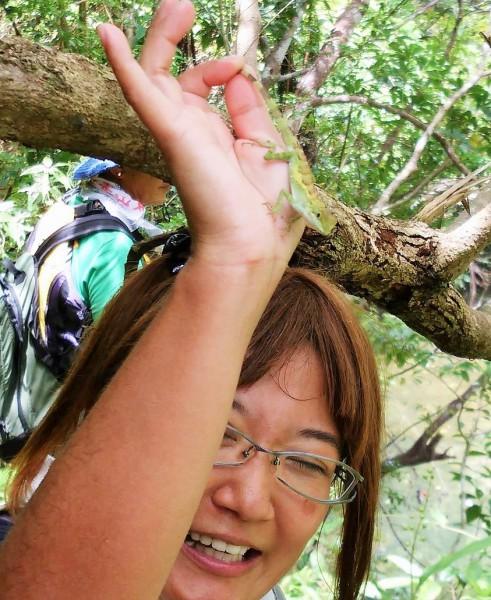 オキナワキノボリトカゲを見せてくれるアキノ隊員 2016年8月11日新川川流域にて=撮影・松中みどり