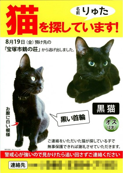 黒猫「りゅた君」の情報提供を呼びかけるチラシ(連絡先はモザイク処理しています。この記事を読んでの情報は記事下のフォームからお寄せください。無事保護できた場合の謝礼は、飼い主さんから情報提供くださった方にお渡しします)