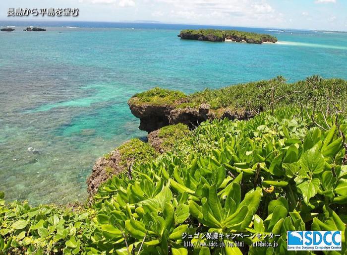 長島と平島。辺野古崎近くの無人島。日豪渡り鳥条約の保護鳥、エリグロアジサシが営巣します。ジュゴン保護キャンペーンセンター(SDCC)ホームページより