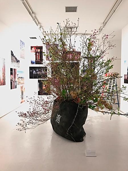 展覧会「Sacrifice―福島第一原発30km圏内の花たちが語る言葉」より=片桐功敦さん提供