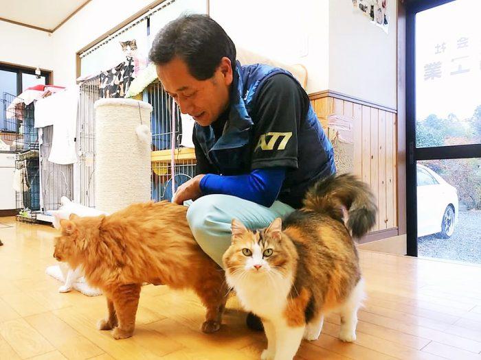 猫たちの様子を見る赤間徹さん=撮影・松中みどり
