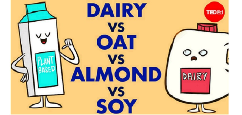 Which type of milk is best for you?=YouTubeチャンネルTED-Edより